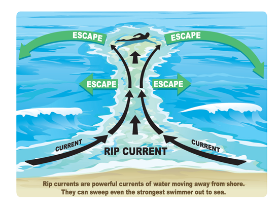 Escape the Grip of the Rip: How to Survive a Riptide